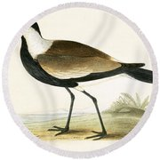 Spur Winged Plover Round Beach Towel by English School