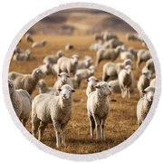 Standing Out In The Herd Round Beach Towel by Todd Klassy