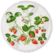 Strawberry Plant Round Beach Towel by Sally Crosthwaite