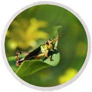 Green Grasshopper Round Beach Towel by Christina Rollo