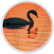 Swan Silhouette Round Beach Towel by Roeselien Raimond