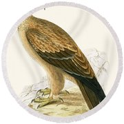 Tawny Eagle Round Beach Towel by English School