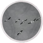 The Flock Round Beach Towel by Kim Hojnacki