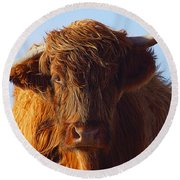 The Highland Cow Round Beach Towel by Stephen Smith