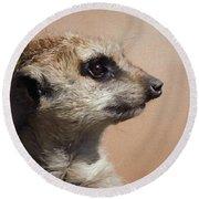 The Meerkat Da Round Beach Towel by Ernie Echols