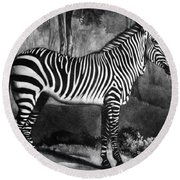 The Zebra Round Beach Towel by George Stubbs