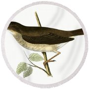 Thrush Nightingale Round Beach Towel by English School