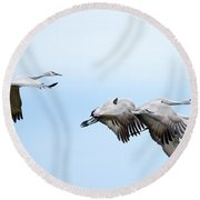 Tight Formation Round Beach Towel by Mike Dawson