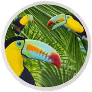 Toucan Threesome Round Beach Towel by Carolyn Steele