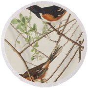 Towhe Bunting Round Beach Towel by John James Audubon