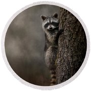 Tree Hugger Raccoon Art Round Beach Towel by Jai Johnson