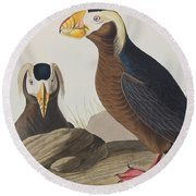 Tufted Auk Round Beach Towel by John James Audubon