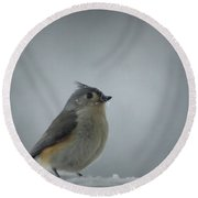 Tufted Titmouse In The Snow Round Beach Towel by Cricket Hackmann