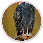 Turkey Vulture Round Beach Towel by Nikolyn McDonald