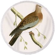 Turtle Dove Round Beach Towel by English School