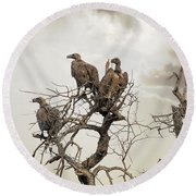 Vultures In A Dead Tree.  Round Beach Towel by Jane Rix