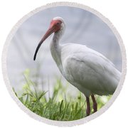 White Ibis  Round Beach Towel by Saija  Lehtonen