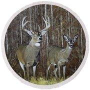 White Tail Couple 24x 24x3/4 Inch Oil On Canvas Round Beach Towel by Manuel Lopez