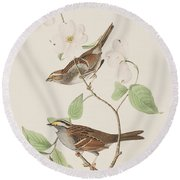 White Throated Sparrow Round Beach Towel by John James Audubon