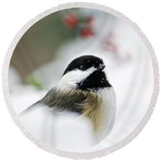 White Winter Chickadee Round Beach Towel by Christina Rollo