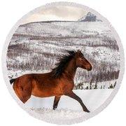Wild Horse Round Beach Towel by Todd Klassy