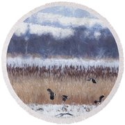 Winter Lapwings Round Beach Towel by Liz Leyden