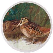 Woodcock In The Undergrowth Round Beach Towel by Archibald Thorburn