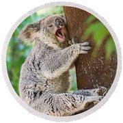 Yawn And Stretch Round Beach Towel by Jamie Pham