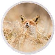 Zen Fox Series - Zen Fox 2.7 Round Beach Towel by Roeselien Raimond