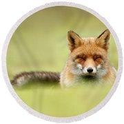 Zen Fox Series - Zen Fox In A Sea Of Green Round Beach Towel by Roeselien Raimond