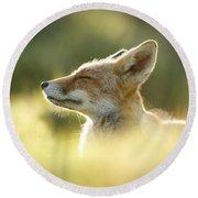 Zen Fox Series - Zen Fox Up Close Round Beach Towel by Roeselien Raimond