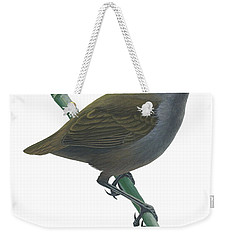 Wrenthrush Weekender Tote Bag by Anonymous