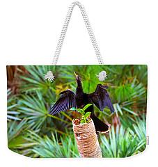 Anhinga Anhinga Anhinga On A Tree Weekender Tote Bag by Panoramic Images