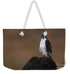 Augur Buzzard Weekender Tote Bag by Art Wolfe