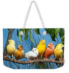 Canaries Weekender Tote Bag by Hans Reinhard