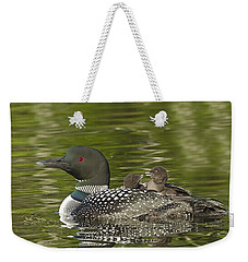 Loon Parent With Two Chicks Weekender Tote Bag by John Vose