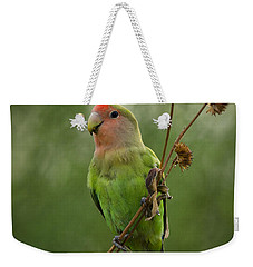 Lovely Little Lovebird  Weekender Tote Bag by Saija  Lehtonen