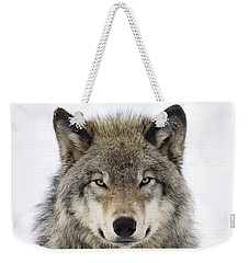 Timber Wolf Portrait Weekender Tote Bag by Tony Beck