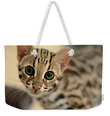 Asian Leopard Cub Weekender Tote Bag by Laura Fasulo
