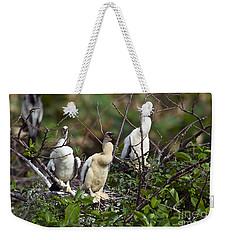 Baby Anhinga Weekender Tote Bag by Mark Newman