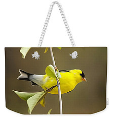 American Goldfinch Weekender Tote Bag by Christina Rollo