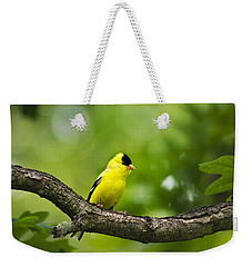 American Goldfinch-4 Weekender Tote Bag by Christina Rollo
