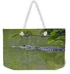 American Alligator Weekender Tote Bag by Mark Newman