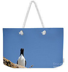 A Curious Bird Weekender Tote Bag by Anne Gilbert