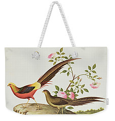 A Golden Pheasant Weekender Tote Bag by Chinese School
