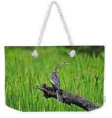 American Anhinga Weekender Tote Bag by Al Powell Photography USA