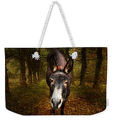 And You Are  ??? Weekender Tote Bag by Donna Kennedy
