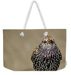 Angry Bird Weekender Tote Bag by Heather Applegate
