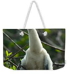 Anhinga Chick Weekender Tote Bag by Mark Newman