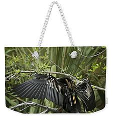 Anhinga Papa Weekender Tote Bag by Phill Doherty